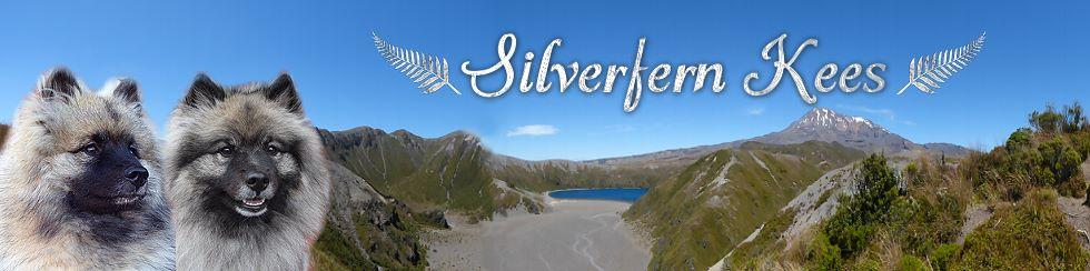 http://www.silverfern-kees.de/